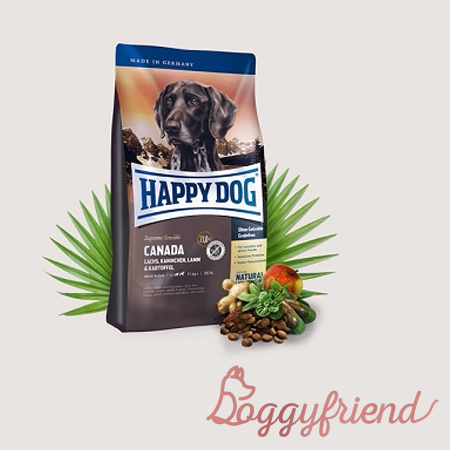 Best Pet Food Deals This Week