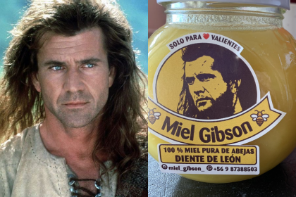 Mel gibson demandara a una chilena published by alese
